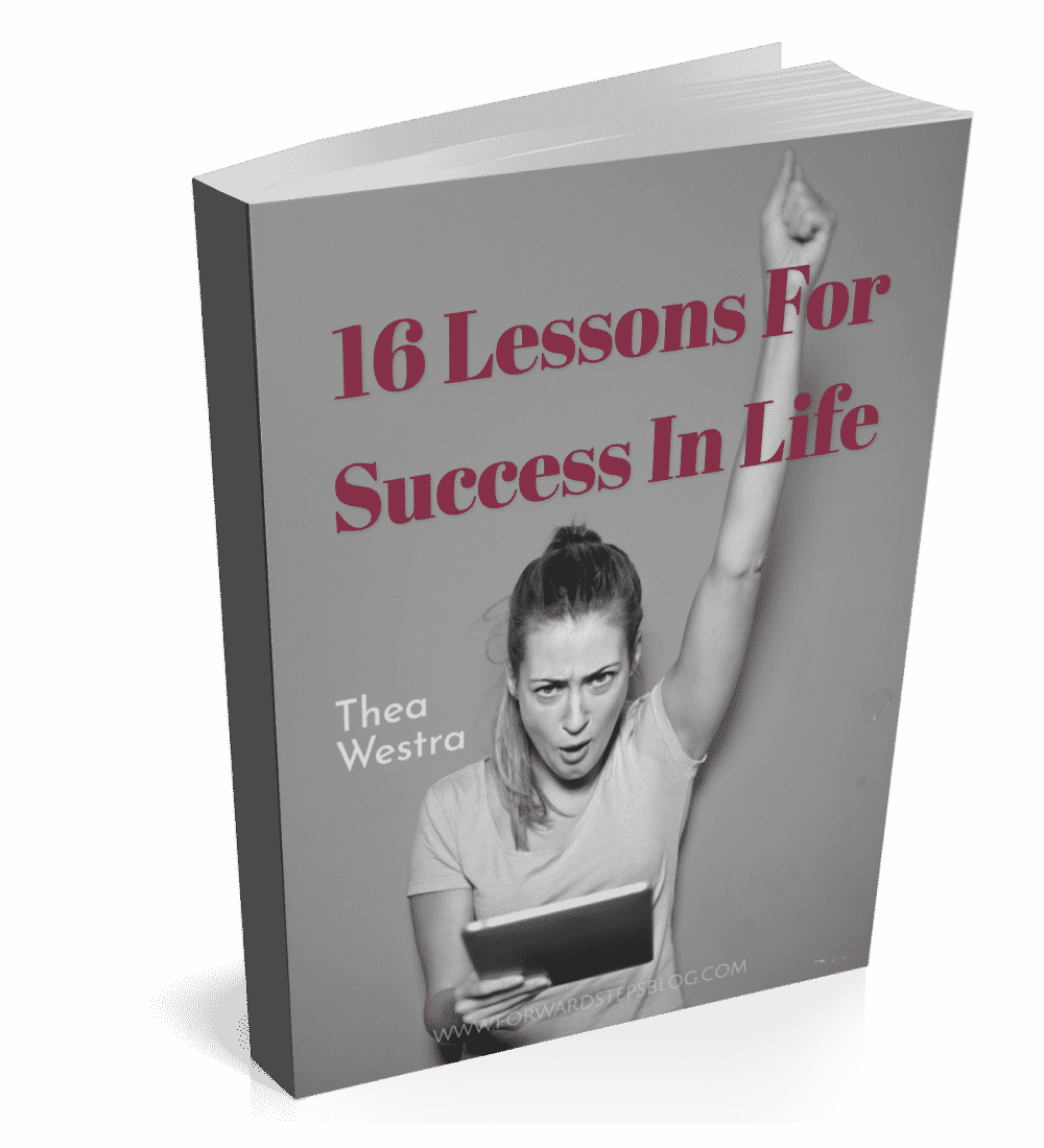 16 Lessons For Success In Life book cover 1300px
