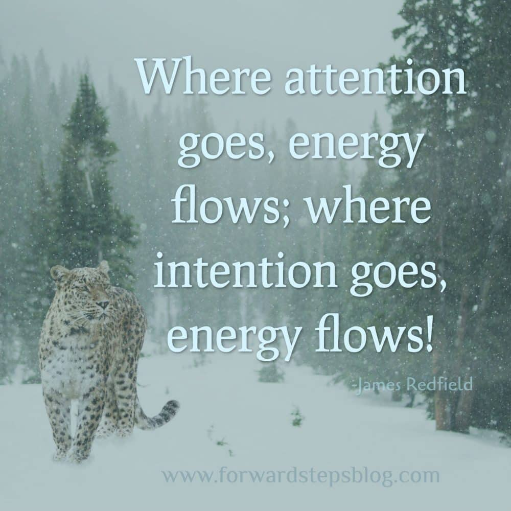 Energy Flows Where Our Attention Goes article image 1