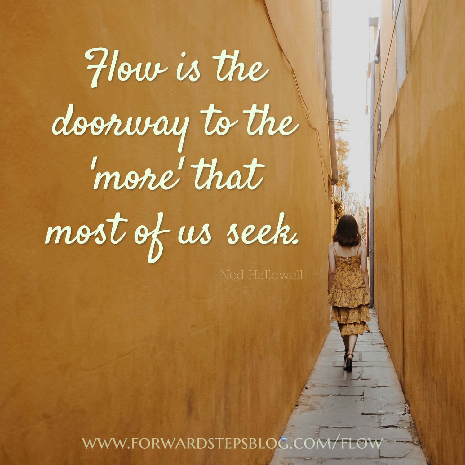 Flow is the doorway - Forward Steps image_14