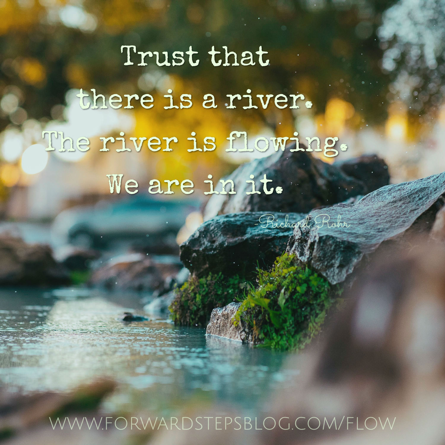 Trust there is a river - Forward Steps image_2