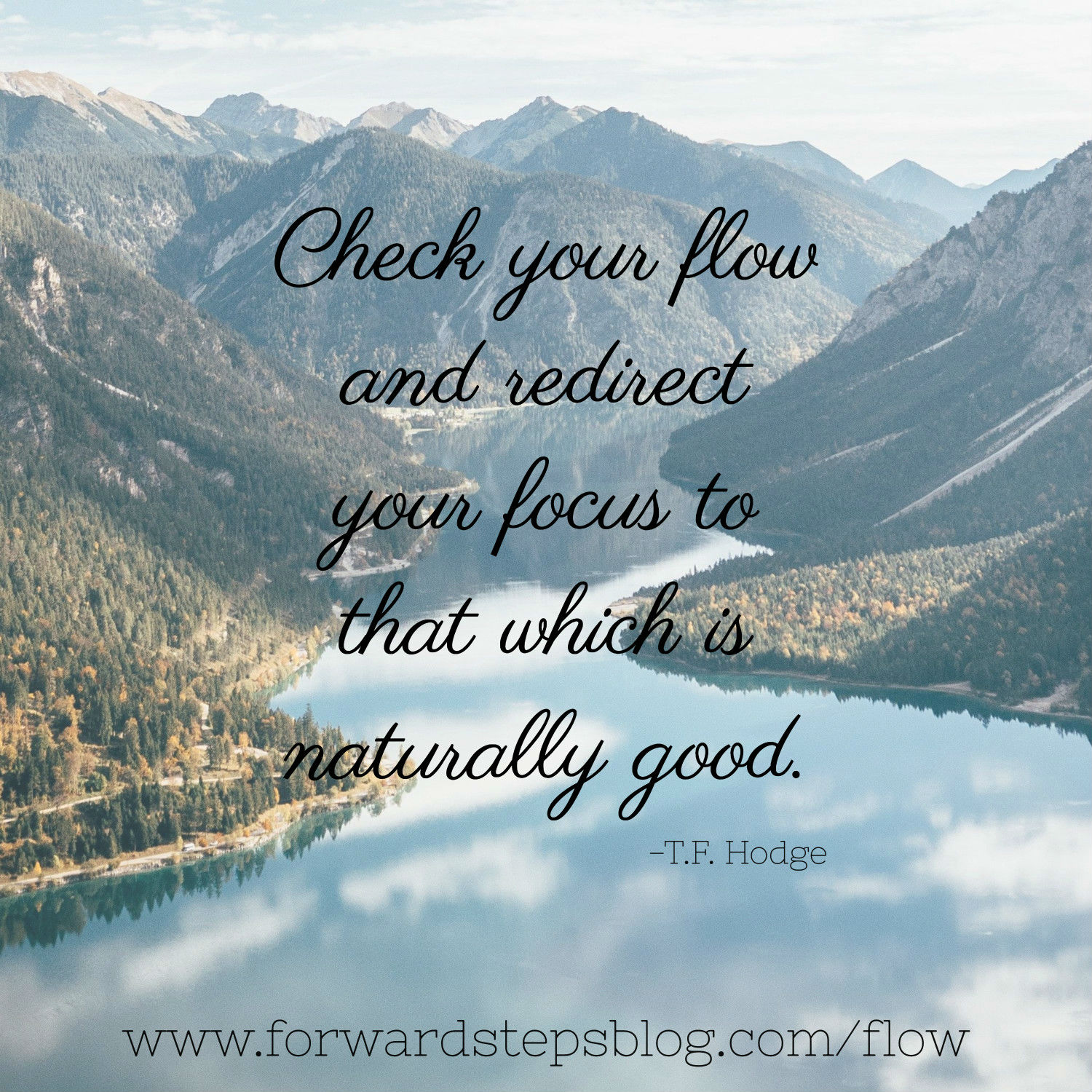 Focus on flow not ebb - Forward Steps image_4