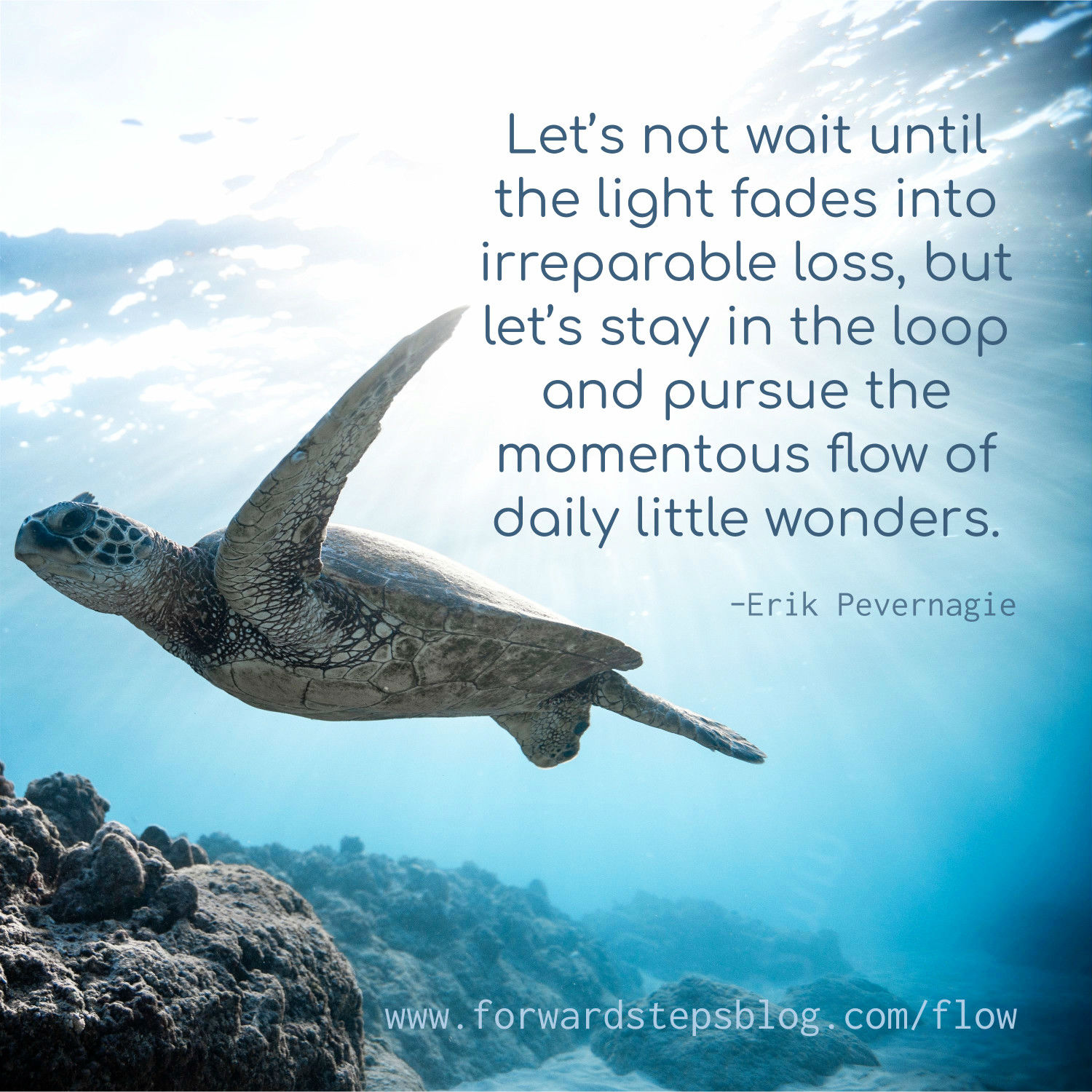 Flow of daily little wonders - Forward Steps image_9