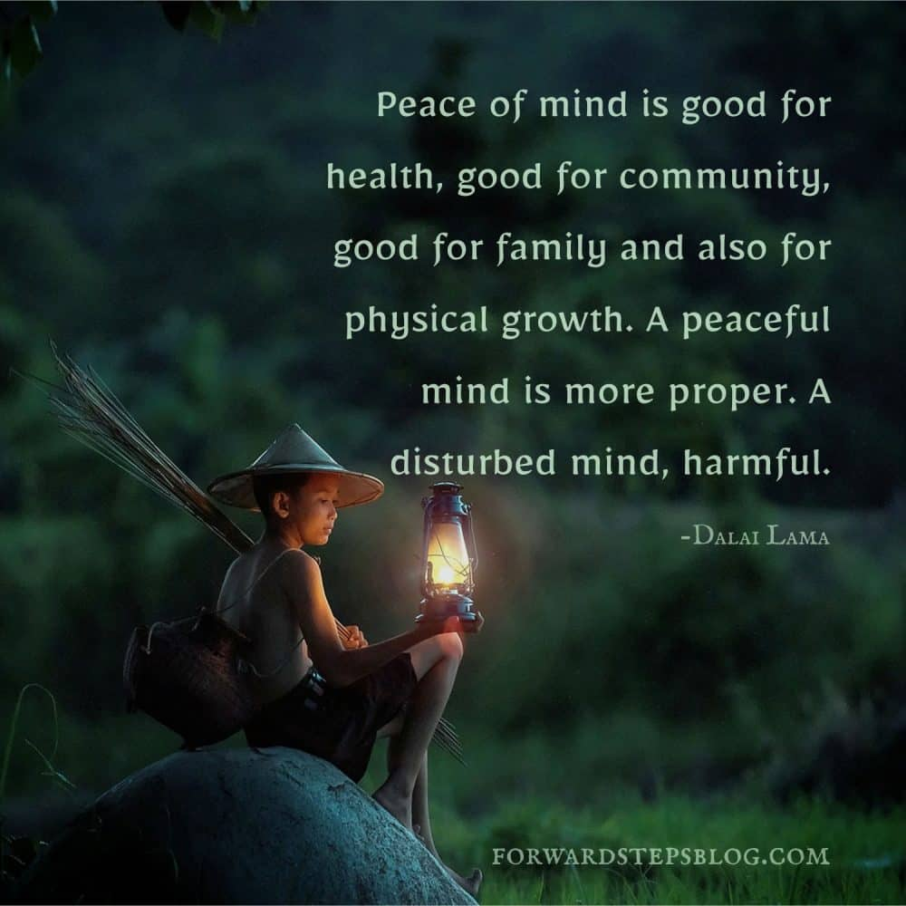 Peace Of Mind - Forward Steps image_1