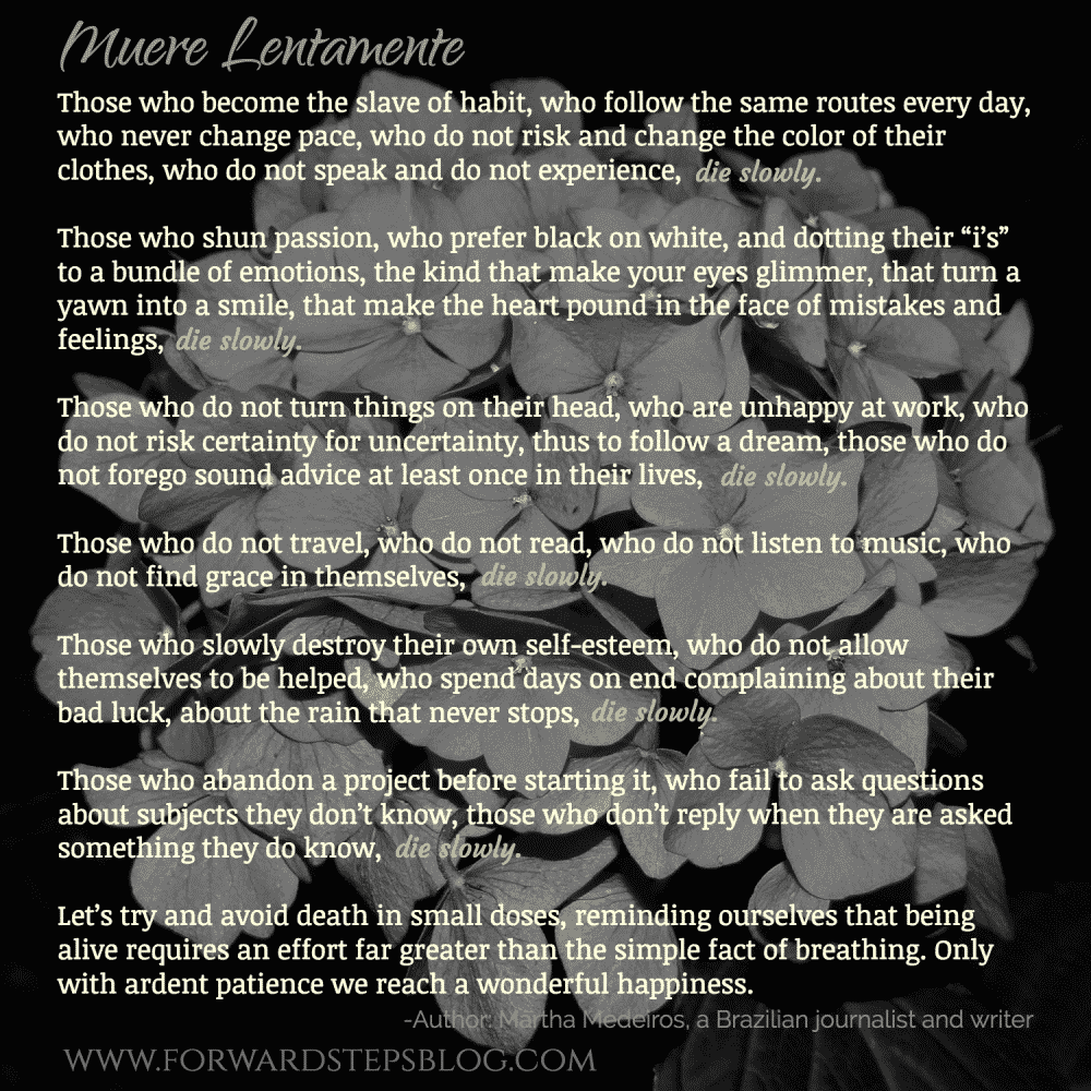 Muere Lentamente by Martha Medeiros